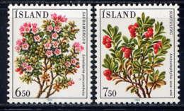 ISLANDE - 572/573** - FLEURS - Ungebraucht