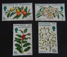 """GUERNESEY  YT 164/167 NEUFS**MNH"""" FLEURS DE NOEL"""" ANNÉE 1978 - Guernsey"""