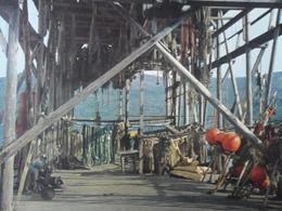 Norway Norge Fishing Drying - Noorwegen