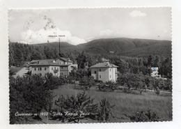 Cavareno (Trento) - Villa Regina Pacis - Viaggiata Nel 1965 - (FDC16318) - Trento