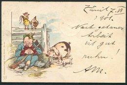 1901 Switzerland Kunzli Comic Pig Cartoon Postcard. Zurich - Uznach - Storia Postale