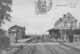 Scheldewindeke.  De Statie-La Gare.  Scan - Autres