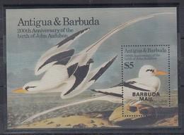 Antigua Und Barbuda Mi.-Nr. Block 93 Postfrisch ** / MNH Möwen BARBUDA MAIL - Antigua Et Barbuda (1981-...)