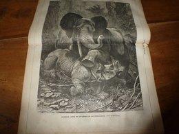 1882 JDV: Combat Eléphant Contre Rhinocéros (gravure);Les Sauvages De Somalie; Les Chevaux Du Tonkin;etc - Kranten
