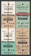 SWITZERLAND QY4893 Grindelwald Jungfraujoch Kleine Scheidegg 4 Fahrkarte Billet Ticket Suisse - Europa