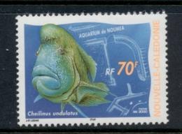 New Caledonia 2000 Noumea Aquarium 70f Wrasse MUH - Nueva Caledonia