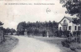44 - Loire Atlantique - SAINT BREVIN L OCEAN - Route De Pornic Au Casino - Saint-Brevin-l'Océan