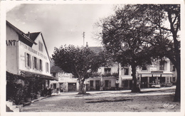 (48)   MONNETIER - La Place - Other Municipalities