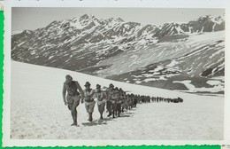 Militare. Soldato. Uniforme. Divisa, Soldati. Alpini. Alpino. 69 - Uniforms