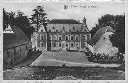 CINEY : Château De Masogne - Ciney