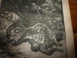 1882 JDV:Chasse Au Tigre;Egypte Avec Gravures (Le Caire,Canal Mahmoudieh,Dahabieh,Chameliers Traversant Le Désert; Etc - Kranten