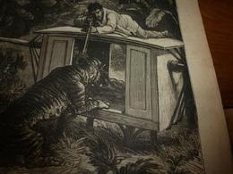 1882 JDV:Le TIGRE En Inde; Spectacle à YOKOHAMA (Japon);Dépt Seine & Marne;Marquis De Rays Et Colonie De Port-Breton;etc - Kranten