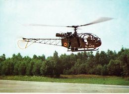 AVIATION-HELICOPTERE-ALOUETTE -HELICOPTER-FORCE MILITAIRE TERRESTRE BELGE-LANDMACHT - Hélicoptères