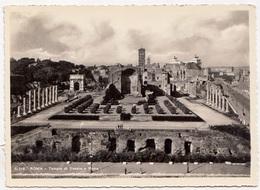ROMA, Tempio Di Venere E Roma, Unused Vera Fotografia, Postcard [23346] - Roma (Rome)