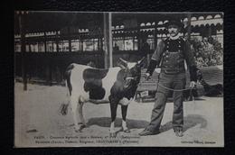 PARIS Concours Agricole 1910 ERGUE ARMEL KERGONAN éleveur FEUNTEUN Louis 1er Prix Génisse - Frankrijk
