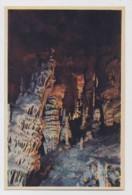 AI84 Cuevas Del Drach, Detalle - Mallorca
