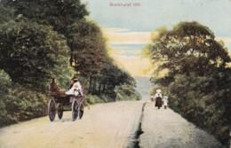 AO15 Buckhurst Hill - 1908 Postcard, Horse And Carriage - England