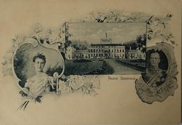 Baarn // Litho // Kon. Echtpaar // Paleis Soestdijk Gelopen 1901 - Baarn