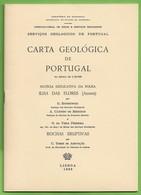 Flores - Carta Geológica De Portugal + Mapa - Açores - Geographical Maps