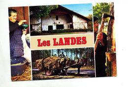 Carte Landes Theme Ane Oie - Aquitaine