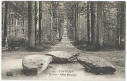 Tervuren - Tervueren -  Le Parc - Pierres Druidiques - Henri Georges, Editeur - No 27 - Tervuren