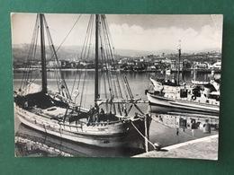 Cartolina S. Benedetto Del Tronto - Porto - 1950 Ca. - Ascoli Piceno
