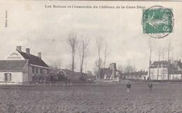 Loiret - Les Ruines Et L'ensemble Du Château De La Cour Dieu - Francia