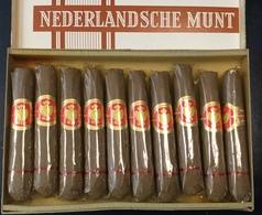 FULL    TOBACCO  BOX    CIGARS   MARIANNE  NEDERLANDSCHE MUNT - Contenitori Di Tabacco (vuoti)