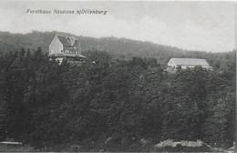 AK 0288  Forsthaus Neuhaus Bei Dillenburg - Verlag Richter Um 1910 - Dillenburg