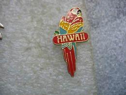 Pin's Perroquet, Perruche, HAWAII - Animali