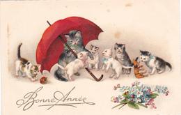 CHAT - 6 CHATONS Et Leur Mère Sous Un PARAPLUIE ROUGE-Jouets-Fleurs Myosotis-Animaux- - Cats