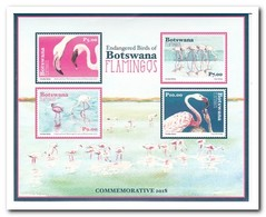 Botswana 2018, Postfris MNH, Birds - Botswana (1966-...)