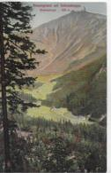 AK 0288  Riesengrund Mit Schneekoppe ( Riesengebirge ) Um 1910-20 - Tschechische Republik
