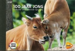 NEDERLAND, 2013, PRESTIGE BOOKLET, PR 44, Burgers'Zoo 100 Years - Postzegelboekjes En Roltandingzegels