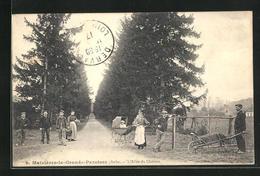 CPA Maizières-la-Grande-Paroisse, L`Allée Du Chateau - Francia