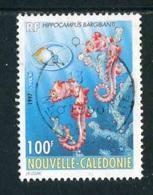 """TIMBRE Oblit. De 1997 """"100 F -  """"Hippocampus Bargibanti"""" - Neukaledonien"""