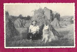 Ancienne PHOTO 13,5 X 8,5 Cm Années 1950...FEMME Adossée à Une Meule De Foin Avec Son CHIEN...PIN UP - Pin-up