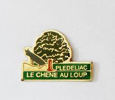 Pin's Plédéliac Le Chêne Au Loup -  BRETAGNE - Villes