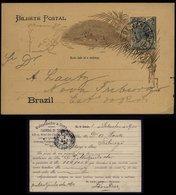 S6557 - Brasilien GS Postkarte Mit Privat Zudruck , Mutzenbecher: Gebraucht Rio De Janairo - Freiburg 1900 , Bedarfser - Ganzsachen