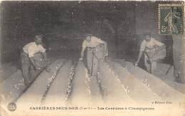 78-CARRIERES-SOUS-BOIS- LES CARRIERES A CHAMPIGNONS - Carrières-sur-Seine