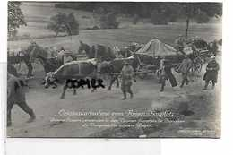 88 ORIGINAL KRIEGSSCHAUPLATZ VOGESEN ZUGOCHSEN - Frankrijk