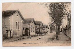 - CPA MONTMOREAU (16) - Route De Chalais - Editions James Delage - - Autres Communes