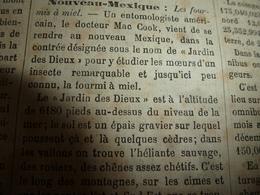 """1882 JDV:  Les Fourmis à Miel Du """"Jardin Des Dieux"""" Au Mexique; Département Du Tarn Et Garonne; Le Rhin; Etc - Kranten"""