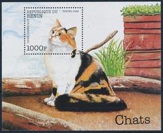 1998Benin1062/B42Cats - Gatos Domésticos