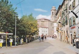 CASTELDELPIANO - GROSSETO - CORSE DEI CAVALLI - INSEGNA PUBBLICITARIA BIRRA PERONI - SINGER - 1978 - Taranto