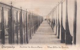 Overijse Overyssche Institut Du Sacré-Coeur Une Allée Du Dortoir - Overijse