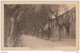 AL7 - VOLONNE - AVENUE DU BEALAGE -  POSTES  TELEGRAPHES   TELEPHONES  -  2 SCANS . - Autres Communes