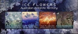 ANTARCTIQUE AUSTRALIEN Bloc Fleurs De Glace 2016 Neuf ** MNH - Unused Stamps