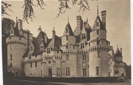 Rigny Ussé - Chateau Kasteel Castle -  Vue D'ensemble - Ed. Yvon Nr 31 - France