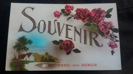 CPA SOUVENIR DU BREIL SUR MERIZE SARTHE PAYSAGE ET ROSES ED DOUNO 667 - France